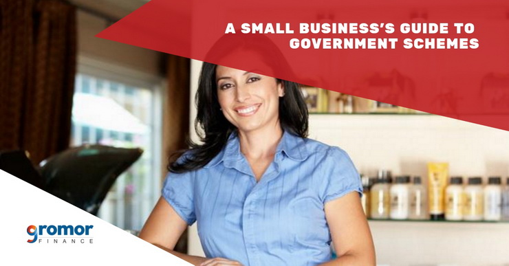 A-Small-Business-s-Guide-To-Government-Schemes